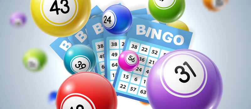 What You Must Know About No Deposit Bingo Understand Poker